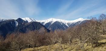 夜叉神峠から白根三山