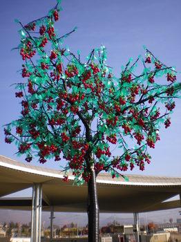 木の実の電球