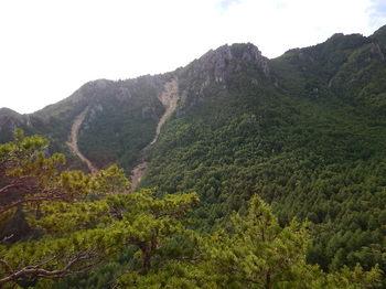 烏帽子岩左稜 線